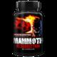 Axxcelerated Sport Nutrition Mammoth Resurrection