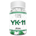 YK-11 CORE LABS